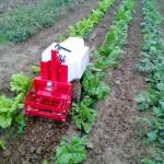 Oz – Le robot autonome